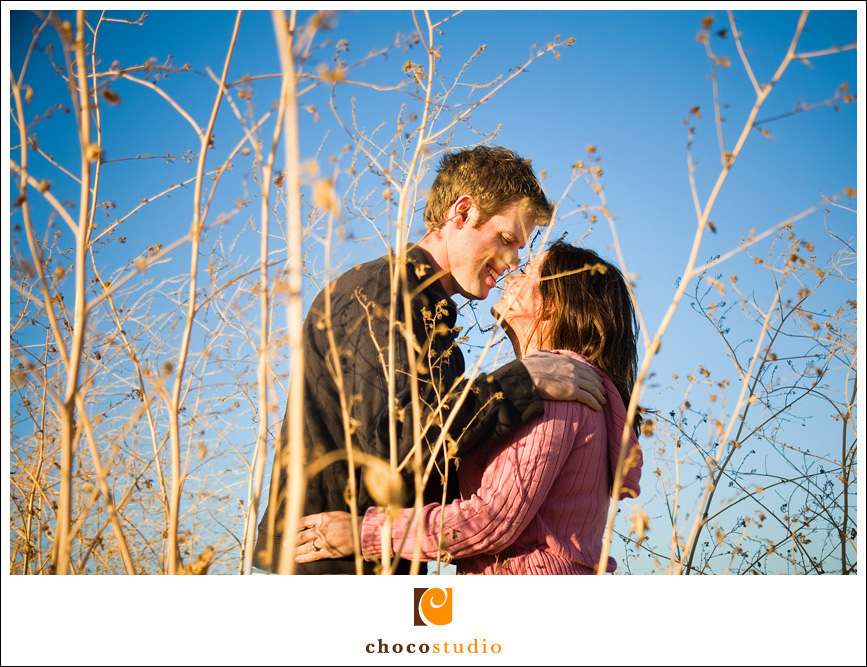 Shoreline Park Engagement photo