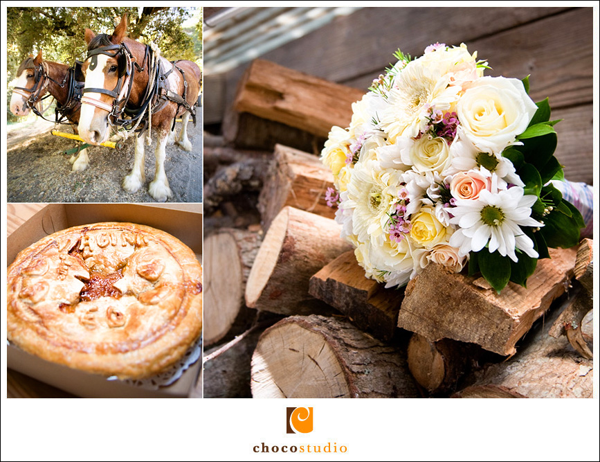 Country Fair Ceremony Photography