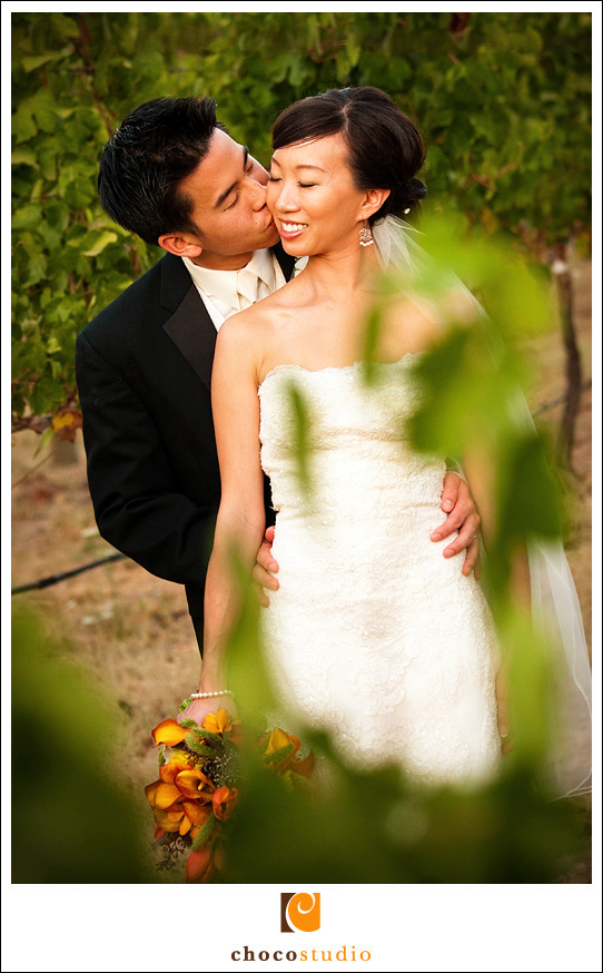 Calistoga Wedding Photo
